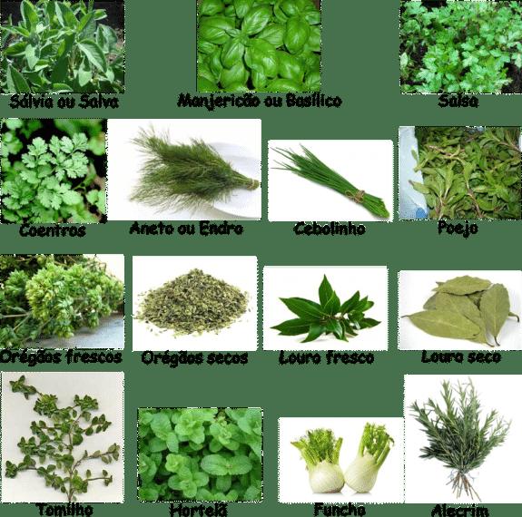 tabela de especiarias frescas, como identificar - Receitas da Tia Céu