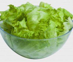 salada de alface - Receitas da Tia Céu