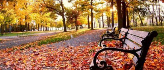 outono - Receitas da Tia Céu