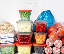 alimento congelado3 - Receitas da tia Céu