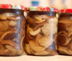 cogumelos1 - Receitas da Tia Céu