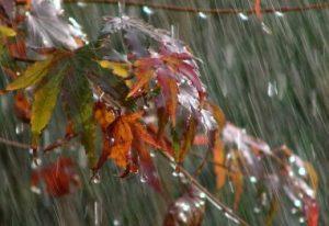 chuva-Receitas da Tia Céu