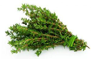 ervas-300x193 Como conservar ervas delicadas