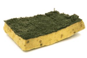 esponja-da-cozinha1-300x200 Aplicações para o sal de cozinha que desconhecia